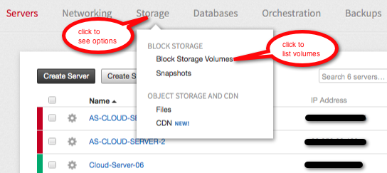 To move from Cloud Servers to Cloud Block Storage details, click Storage and then click Block Storage Volumes.
